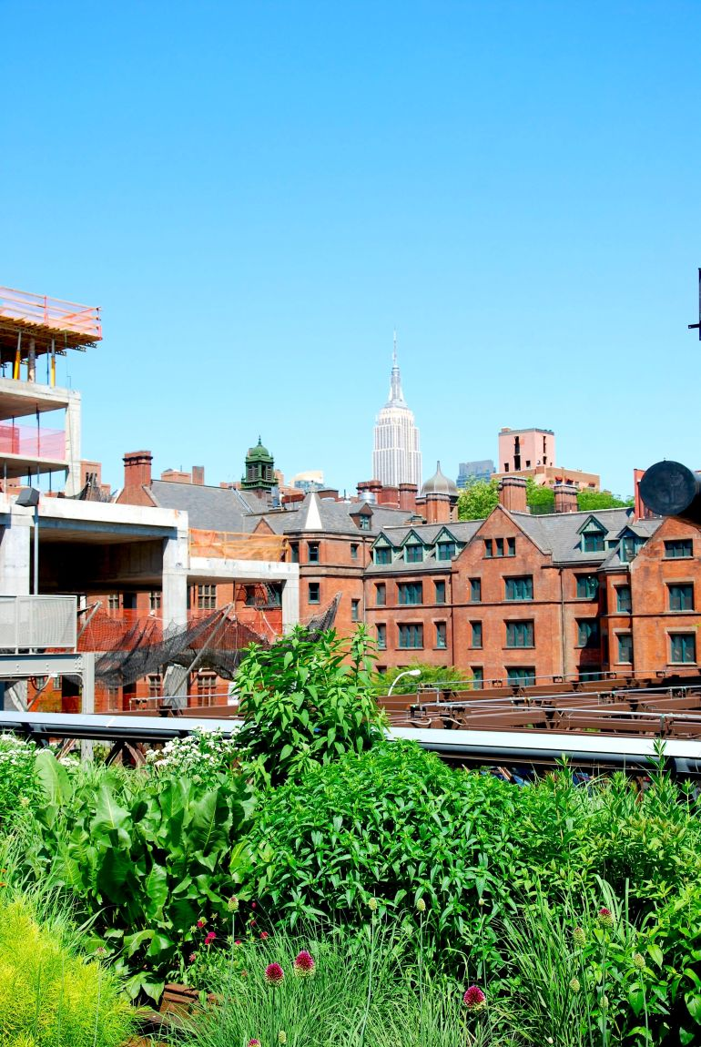 The Chelsea Highline